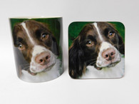 Springer Spaniel Brown & White Face Mug and Coaster Set