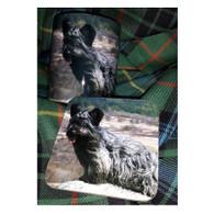 Skye Terrier on Rock Mug & Coaster