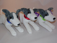Collection of 3 Greyhounds Wearing Blue, Red, Green Collars