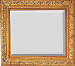 Prestige Frame 16X20 Antique Gold
