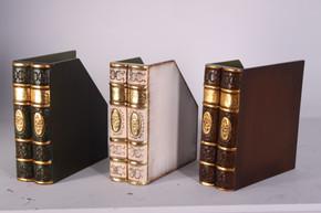 Book Files Set of 3