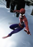 Spiderman  Murray
