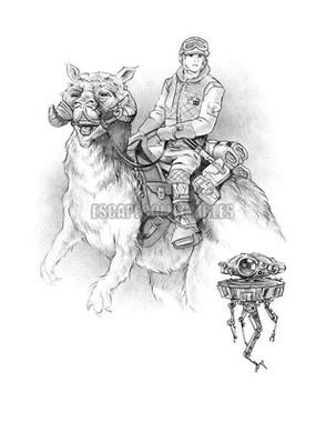 Luke Rides a Tauntaun