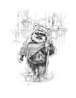 Wicket Ewok Star Wars