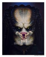 Predator Beauvais