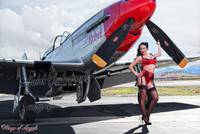 Malak Wings of Angels Hot Rox WWII P-51D Mustang