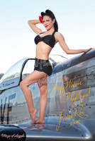 Wings of Angels Malak Pin Up Jen Rox Calendar Girl WWII P-51D Mustang