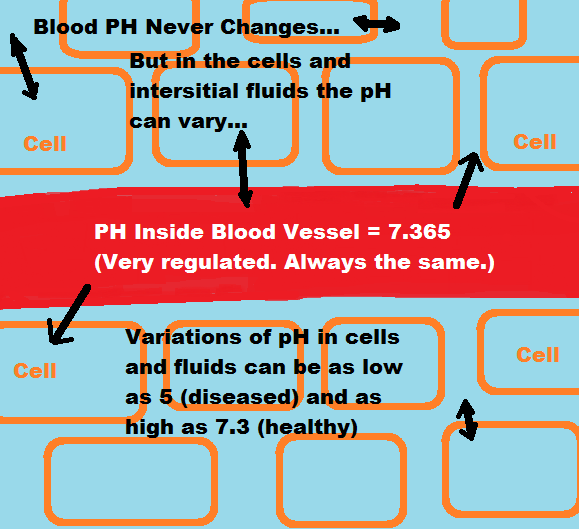 PH of Blood, Cells and Interstitial Fluids