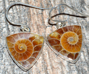 Ammonite 925 Sterling Silver Earrings Jewelry JJ7503