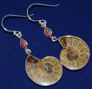 Ammonite 925 Sterling Silver Earrings Jewelry JJ7712