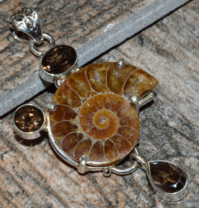 Fossil Ammonite & Smokey Quartz 925 Sterling Silver Pendant Jewelry JJ8138