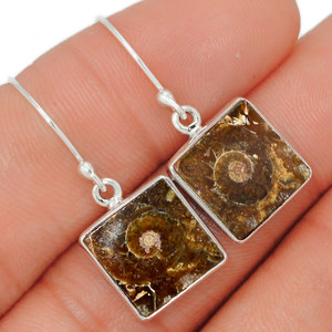 'Fossil'' Ammonite - Madagascar 925 Sterling Silver Earring XGB Jewelry BE21652