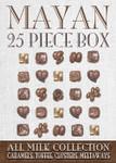 Mayan Collection Dark Chcocolate 25 Piece Box