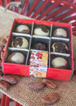 Brown Cow/Big Cheese Truffle 9 Piece box with clear lid