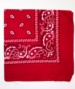Red Cotton Bandana Scarf