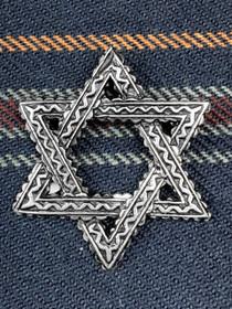 Small Star Pin image