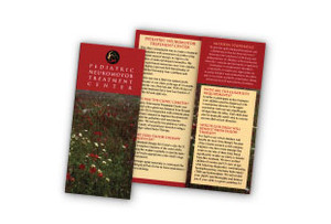 "Tri-Fold Brochures     8-1/2"" x 11"""
