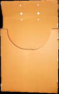 Kraft Retention Envelopes