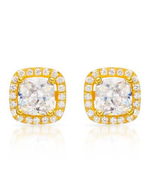 Stud Plus 14K/925 Gold plated Silver Earrings With Cubic zirconia