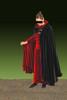 Luxurious Stretch Velvet Reversible Hooded Cape