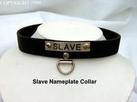 Slave Name Plate Collar