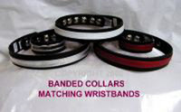 Banded Collar with Colored Overlay ( Matching Items Available)