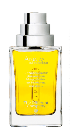 The Different Company ADJATAY, cuir narcotique EDP 100ML