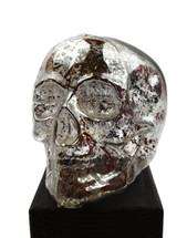 """Glass Skull 6"""" X 8"""""""