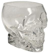"""Glass Skull Holder 4.5"""" x 6"""""""