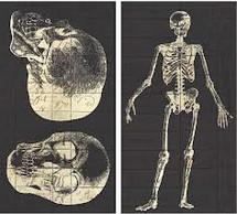 """Skeleton Matches 4.5"""""""