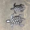 Sea Turtles Haiti