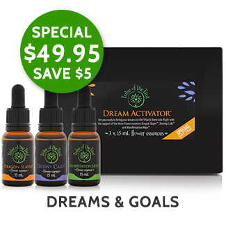 Dream Activator Flower Essence Kit, comprised of the flower remedies Dragon Slayer, Manifestation Mojo and Destiny Calls