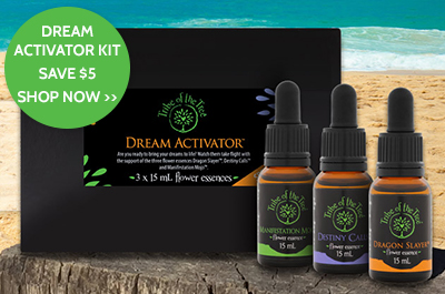 Dream Activator Flower Essence Kit - promo on now