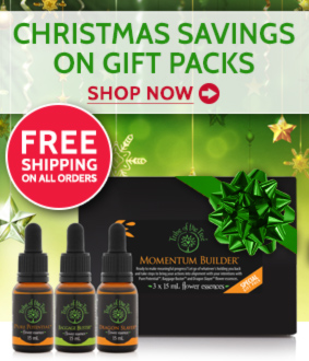 Christmas savings on flower essence kits