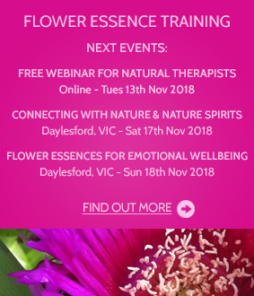 Flower essence training, courses and workshops online and face-to-face in Australia