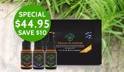 Christmas savings on Dream Activator Flower Essence Kit