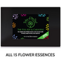 Tribe of the Tree's Full Kit & Caboodle Flower Essence Kit - our complete range of 15 flower essences