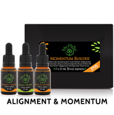 Momentum Builder Flower Essence Kit, containing Dragon Slayer, Baggage Buster and Pure Potential