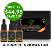 Christmas savings on Momentum Builder Flower Essence Kits, containing Dragon Slayer, Baggage Buster and Pure Potential