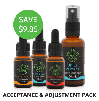 A special bundle of flower essences to support you during times of change, upheaval or crisis: Shock Absorber, Go with the Flow, and Up, Up & Away Flower Essence and Flower Essence Mist.