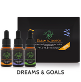 Dream Activator Flower Essence Kit, containing Dragon Slayer, Manifestation Mojo and Destiny Calls flower remedies to help bring dreams to life