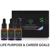 On Purpose Flower Essence Kit, containing Destiny Calls, Treasure Hunter and Connection Creator flower remedies