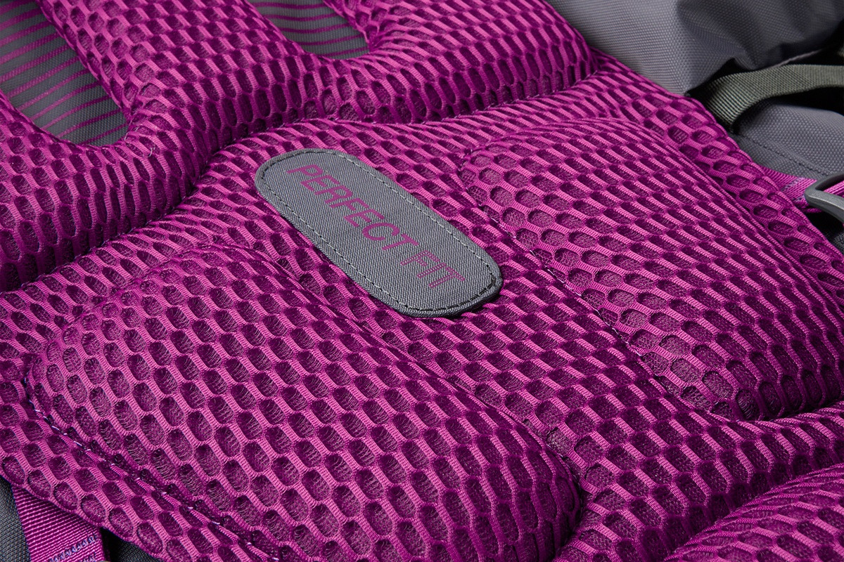 Close up of Kelty Women's Coyote 60 backpack, showing pink mesh back panel
