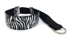 "1.5"" Zebra Private Prong Collar"