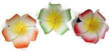 Hawaiian Hair Clips 3 pk-Orange, Green, & Red