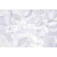 Victoria Lynn™ Loose Rose Petals - White - 300 pcs