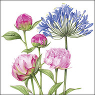 BS77482 - Agapanthus and Peonies (6 blank cards)