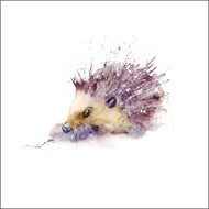 RT84704- Hedgehog (6 blank cards)