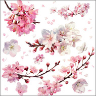 BS77662- Cherry blossom (6 blank cards)