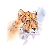 RT84849 - Cheetah (6 blank cards)